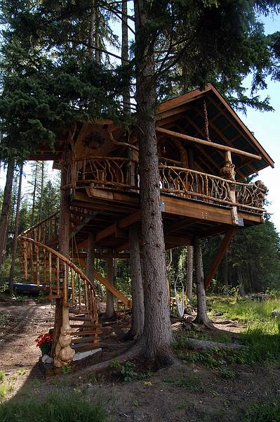 Outa the Woods Tree House