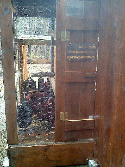 hen house door