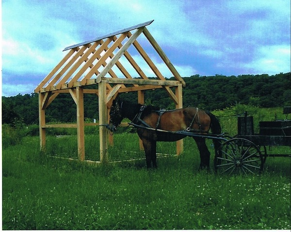 timber frame and horse