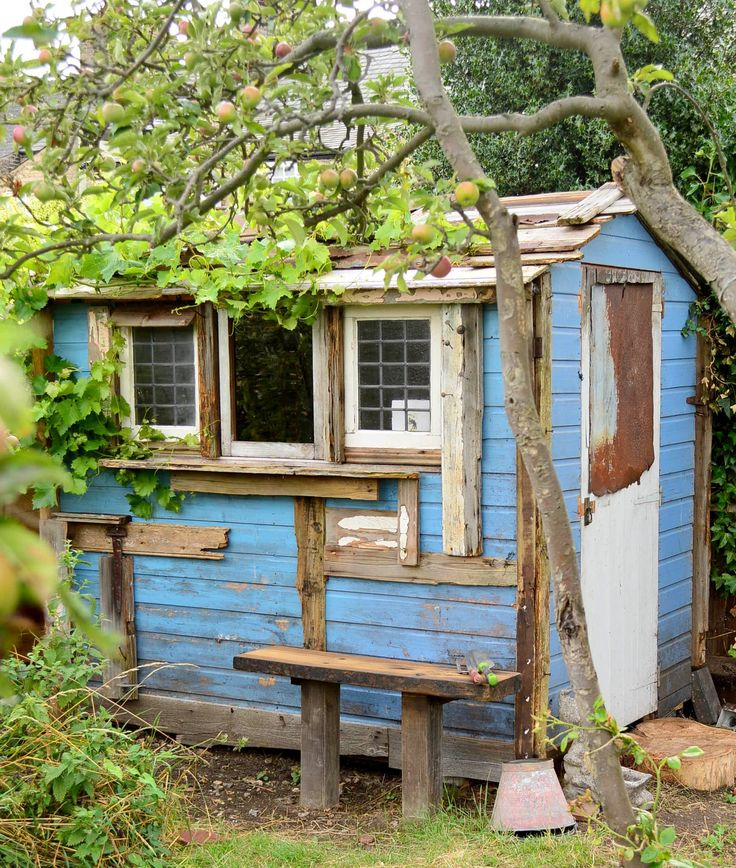 allotment-shed