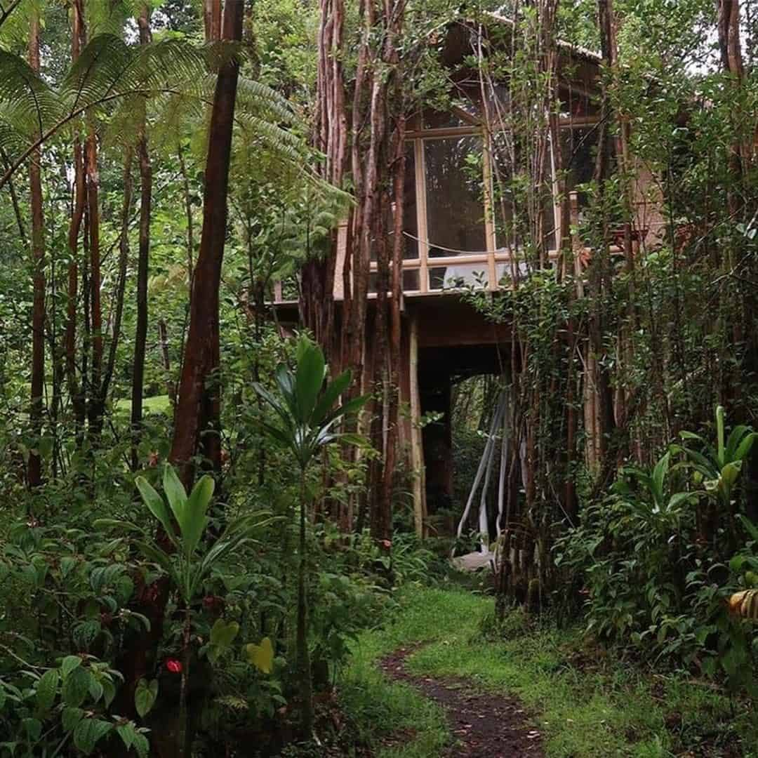 Big Island Treehouse